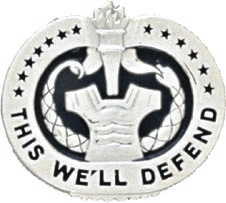 No-Shine Drill Sergeant Badge (Gold)