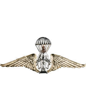 No-Shine (NS-963) Thailand Army Parachutist Wings