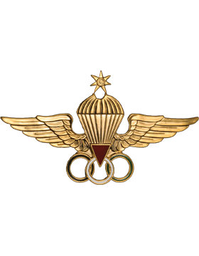 No-Shine (NS-965) Jordanian Master Parachutist Wings