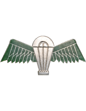 No-Shine (NS-970) Saudi Arabian Parachutist Wings small