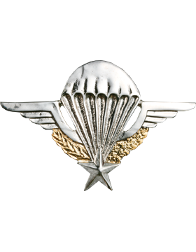 No-Shine (NS-976) French Large Parachutist Wings (Nickel and Gold Finish)