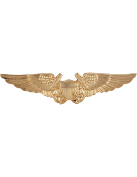 NY-302 Naval Flight Officer