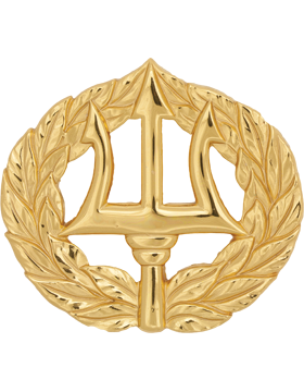 NY-321 Command Ashore