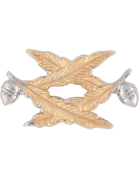 NY-607 Officer Collar Civil Engineer (Each) Gold Plated