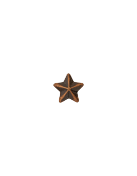 Ribbon Device, 3/16 Bronze Star small