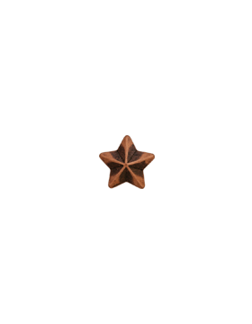 Ribbon Device, 5/16 Bronze Star