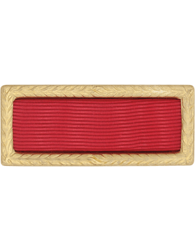 Army Meritorious Unit Award (Ribbon and Frame)