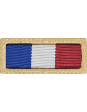 Philippine Presidential Army Unit Citation (Ribbon and Frame)