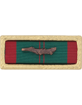 Vietnam Civil Action with Palm Army Unit Citation (Ribbon and Fr