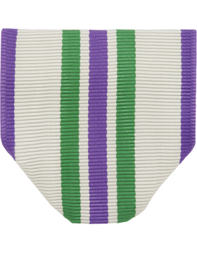 RC-D101P, Distinguished Cadet Award Drape (N-1-1) with Pin & Safety