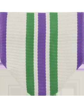 RC-D101 Distinguished Cadet Award Drape (N-1-1)