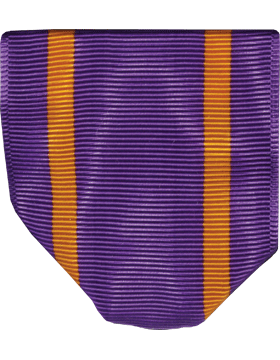 RC-D202 Cadet Honors Drape (R-1-2)