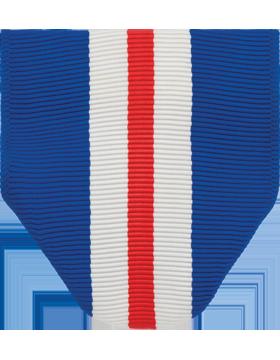 RC-D319, AFJROTC Cadet Humanitarian Award Drape