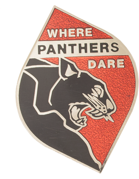 Brookwood High School (Where Panthers Dare) JROTC Unit Crest