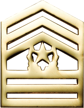 No-Shine Army ROTC Rank (RC-110) Command Sergeant Major