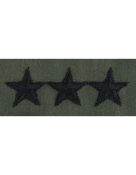 Subdued Sew-on Rank S-124-P Point to Point Lieutenant General