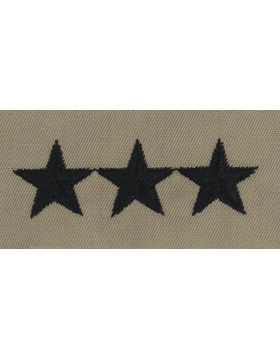 Desert Sew-on SD-124-P Lieutenant General (Point to Point)