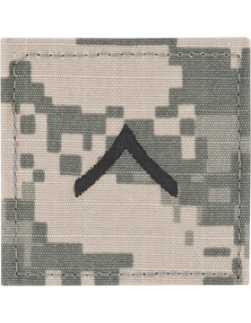 ACU Sew-on Shirt Rank E-2 Private