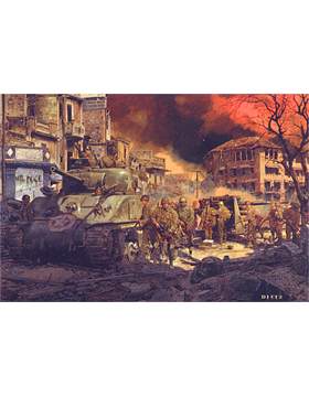 WWII Unframed Canvas Print Into the Shadow
