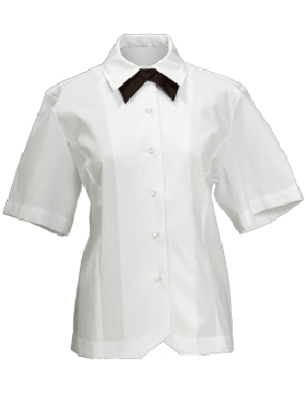 Female Dress White Blouse